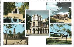 SOMALIE - DU CAP GARDAFUI AU GOLFE DE TADJOURA - LE VISAGE DU PAYS SOMAL - CPSM Multivues (5 Clichés) Dentelée Colorisée - Somalia