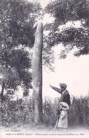 60 - Oise -  PRECY A MONT - Phenomene Trouvé Dans La Sabliere En 1866 - Menhir - France