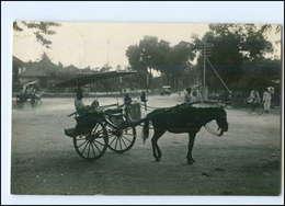 U5319/ Batavia Niederländisch-Indien Foto AK 1930 - Ansichtskarten