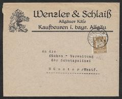 1926 Dt.Reich - EF 3Pf Mi. 355 - ILLUSTRIERTER WERBEUMSCHLAG - WENZLER & SCHLAISS ALLGÄUER KÄSE - Deutschland