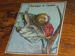 L'escargot Et L'indien Image Découpée - Old Paper