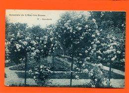 ET/215 ROSERAIE DE L HAY LES ROSES  STANDARDS - L'Hay Les Roses