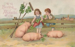 CPA Gaufrée Cochon Porc Pig Pigglet Porcelet Enfant Porte-Bonheur Bonne Année Embossed  Illustrateur (2 Scans) - Varkens