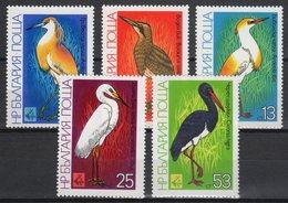 Collection Of Birds! Bulgaria 1981. Animals / Birds Nice Set MNH (**) - Autres
