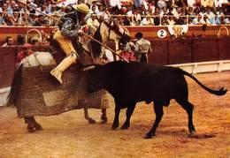 Spain España  Corrida De Toros  Picador    Stierengevecht   Barry 4096 - Stieren