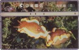 = TAIWAN -  R01R017  =  MY COLLECTION - Taiwan (Formose)