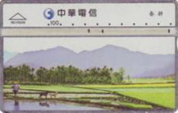 = TAIWAN -  R01R039  =  MY COLLECTION - Taiwan (Formosa)