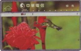= TAIWAN -  R01R047  =  MY COLLECTION - Taiwan (Formose)