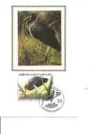 Belgique - Buzin - Cigogne Noire ( 3388  En CM Sur Soie De 2005 à Voir) - 2001-2010