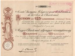 Titre Ancien - Société Anonyme Hongroise Pour  La Fabrication De La Soie De Chardonnet - Titre De 1904 - - Textiel