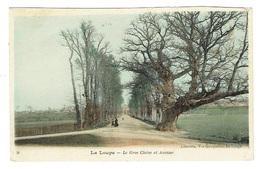 28 EURE ET LOIR LA LOUPE Le Gros Chêne Et Avenue Carte Couleur - France
