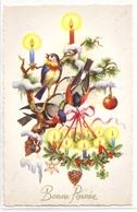 BA 841 OLD FANTASY POSTCARD , GREETINGS , BONNE ANNEE , BIRDS , - Nouvel An
