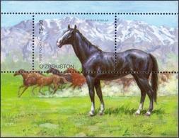 Uzbekistan - Horses, Souvenir Sheet, MINT, 1999 - Pferde