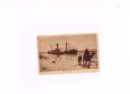 Suez Canal.Navire.Dromadaire.Expédié De Suez à Saint-Gilles (Belgique) - Suez