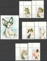 E240 1996 AFGHAN POST FAUNA PETS CATS 1BL+1SET MNH - Domestic Cats
