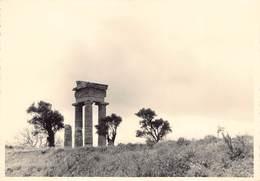 Griekenland Greece Rhodos Ruines Du Temple   Photo Foto GEVAERT   Barry 4154 - Grecia