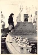 Griekenland Greece Rhodos Baie De Mandraki Haven Port  Fish Market Vismarkt Vis Poissons Photo Foto GEVAERT   Barry 4184 - Grecia