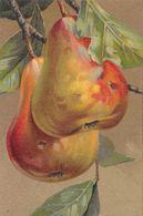 Poire - Poires - Carte Sans Références - Botanik