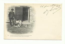 SAvoie, Traineau Service Poste, Voyagée 1905 , A Voir Attelage Chiens ( Tous Frais En + 1,20 Euros - France