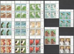 VV703 1992,1994 MALDIVES FAUNA BIRDS MICHEL #1673-82,2084-6 212 EURO 8SET MNH - Vögel