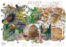 Nederland - 2019 - Velletje Beleef De Natuur - Bomen En Bladeren - Echt Gebruikt - Period 2013-... (Willem-Alexander)