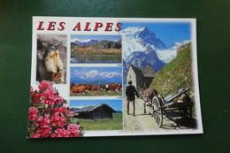 K 4 ) IMAGES DES ALPES - Rhône-Alpes