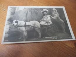 Fantasiekaart Hond, Dog, Hund,La Princesse Lilette Et Ses Chiens - Chiens