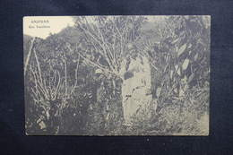 COMORES - Carte Postale - Anjouan - Une Vanillerie - L 50417 - Comores