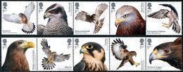 Great Britain 2019 Birds Of Prey 10v MNH - Eagles & Birds Of Prey