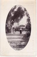 ANGLETERRE--BOTANICAL GARDENS HORSHAM-ANIMÉE - Autres