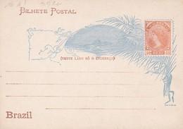 "BRAZIL - ""40 REIS"" ENTIRE CARD CIRCA 1900, NOT CIRCULATED. NESTE LADO SO O ENDEREÇO -LILHU - Postwaardestukken"
