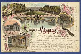 CPA YVELINES (78) - SOUVENIR DE VERSAILLES - TIMBRE SAGE ET OBLITERATION DE 1900 - Versailles (Castello)