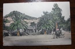 Hyères Les Palmiers - Le Rond Point - Hyeres