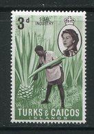 TURKS Et CAIQUES- Y&T N°202- Neuf Sans Charnière ** - Turks & Caicos
