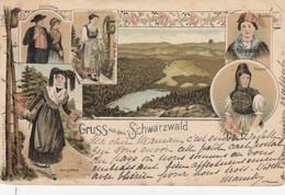 POSTKART GRUSS AUS DEM SCHWARZWALD  / 2 - Duitsland