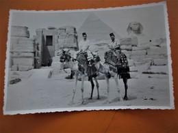 Cpa Photo_Campagne D' Egypte 2 Zouaves Spahis A Dos De Dromadaire Devant  Grande Pyramide Et Sphinx - Gizeh
