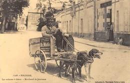 Sologne - Les Voitures à Chiens - Marchand De Journaux - Cecodi N'706 - Non Classés