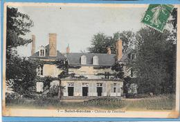 45 SAINT GONDON - Château De Dominus - France