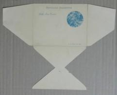 ANGEL GRAPE VINO WINE ARGENTINA 1901 POSTAL STATIONERY PS Cover VIEW # 9079   131219B - Briefmarken