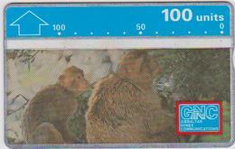 #03 - GIBRALTAR-04 - MONKEY - 230A - Gibraltar