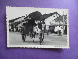 CPA PHOTO VIET NAM RUE ATTELAGE CHEVAL - Viêt-Nam