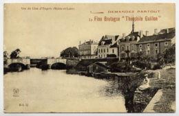 49*ANGERS-Vue De Lion D'Angers - Angers
