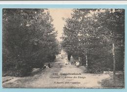 Cappellenbosch : Vijverslei - Kapellen