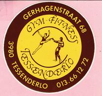 Sticker - Gym Fitness Tessenderlo - Gerhagenstraat 68 - Stickers