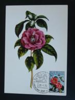 Carte Maximum Card Camellia Floralies De Gent Belgique 1970 - Autres