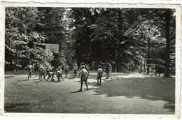 Profondeville - Collège De La Hulle - Basket Ball - 2 Scans - Profondeville