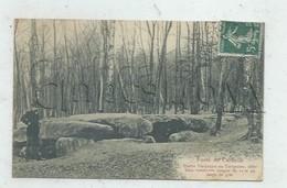 Saint-Martin-du-Tertre (95) : GP De La Pierre Turquaise Dolmen Dans La Forêt Des Carmelles En 1902 (animé) PF. - Saint-Martin-du-Tertre