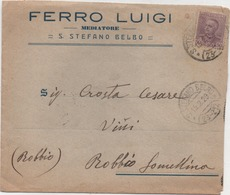 Parmeggiani Cent. 50 Su Busta Ferro Luigi Mediatore Con Annullo Santo Stefano Belbo (Cuneo) 15.02.1929 - Storia Postale