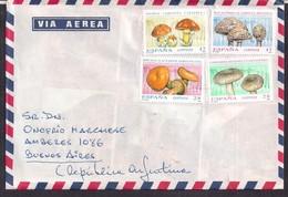 España - 1993 - Lettre - Champignons - Pilze
