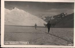 ! S/w Ansichtskarte Fotokarte, Photo, Niederjochferner, Tirol, Skifahrer, Alpen, Wintersport - Autriche